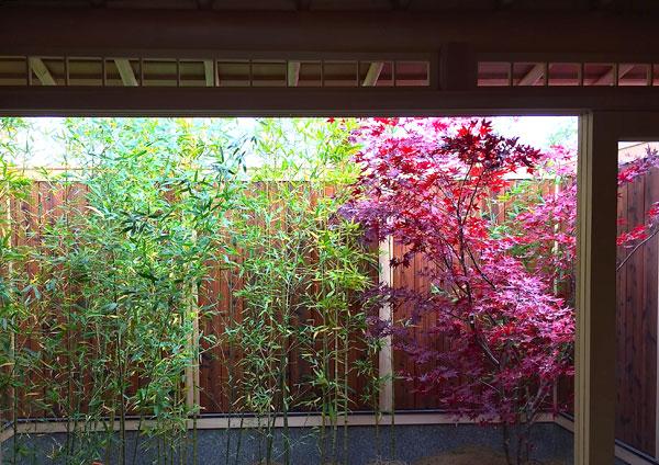 history-Autumn-Garden